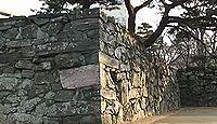 徳島城 阿波国(徳島県徳島市)のキャプチャー
