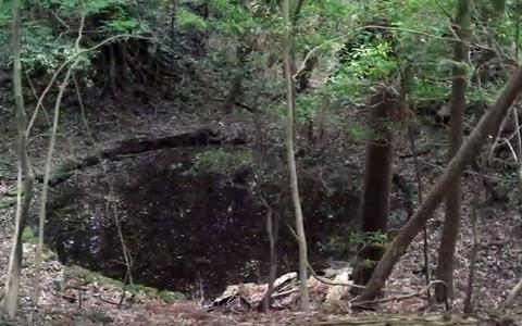 鳴雷神社 宮中主水司坐神一座。写真は関連が考えられる春日山中の高山龍王社近くの竜王池