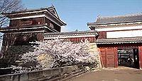 上田城 信濃国(長野県上田市)のキャプチャー