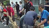 重要無形民俗文化財「因幡の菖蒲綱引き」 - 子ども集団が中心の五月節供の綱引きのキャプチャー