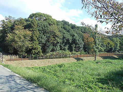 景行天皇陵とされる渋谷向山古墳、宮内庁が整備・発掘調査の一部を公開、歓迎と戸惑いのキャプチャー