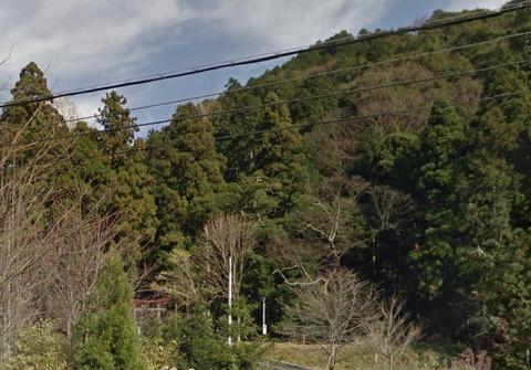 杉森神社 福井県大飯郡高浜町六路谷のキャプチャー