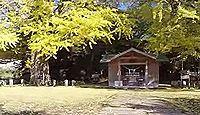 宮浦宮 - 神武天皇のお手植え後継の樹齢1000年を超す夫婦銀杏が有名、鹿児島大隅の式内社