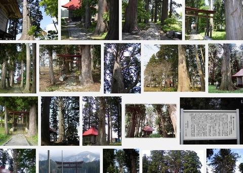 石動神社(山形県新庄市萩野)