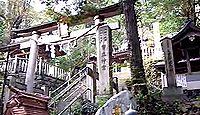 幣立神社 - 樹齢1万5000年の御神木がある境内、天岩戸隠れや五色神祭なども