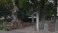 胸形神社 栃木県小山市寒川のキャプチャー