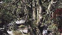 八幡神社 大阪府河内長野市天見のキャプチャー