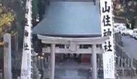 山住神社(浜松市) - 三方原の戦いで徳川家康が逃れ、助かったお犬さま信仰の式内社