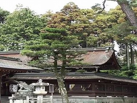 滋賀県の神社