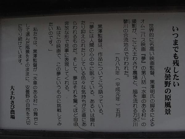 RIMG11791