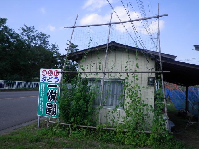 RIMG5438