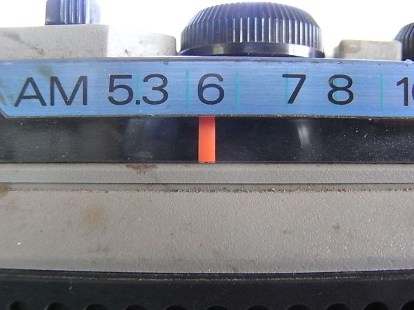 RIMG13516