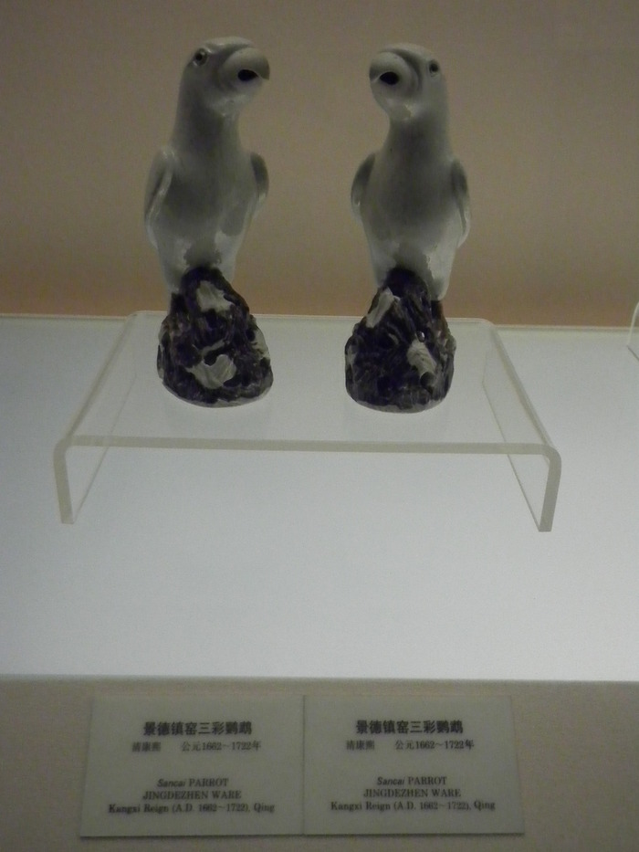 RIMG18073