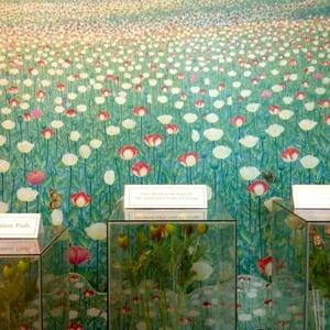 opiummuseum01