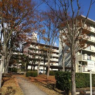 写真 2014-11-23 12 30 33