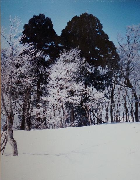 DSC04389恩原三国山