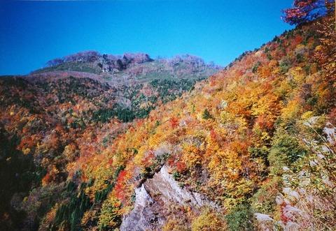 DSC04386三国山林道