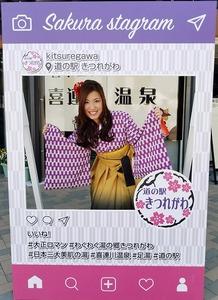 kitsuregawa20180422 (1)