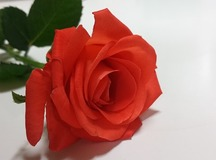 20131022_170038
