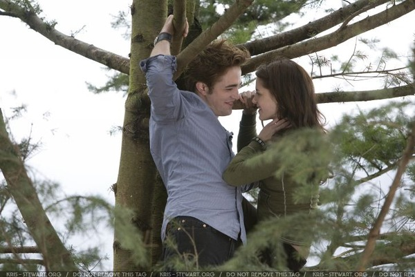 twilight-still018