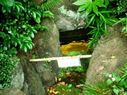武者小路実篤記念館-光藻