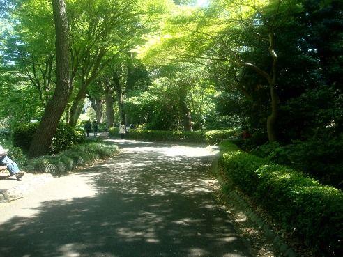 皇居東御苑-松の大廊下跡