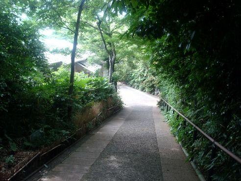 実篤公園@仙川