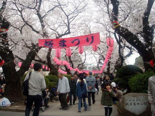 新井薬師公園-第26回中野通り桜まつり