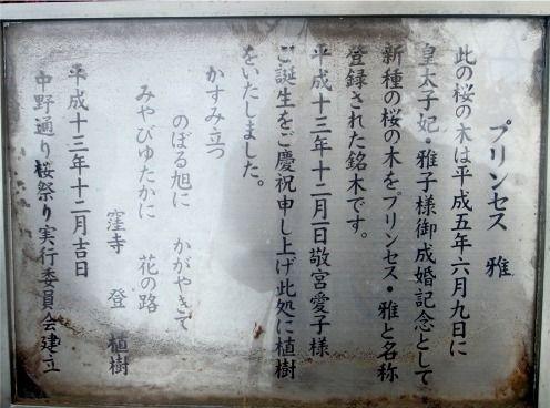 プリンセス雅-新井薬師梅照院