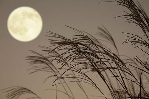 ah_moon3