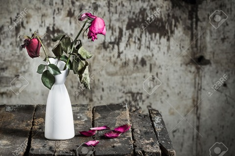 25613806-withered-roses-in-vase-on-old-wooden-Stock-Photo