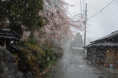 070404yukisigurenokaido_600