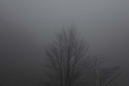 六甲の霧-7(20161120)