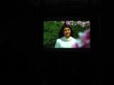 春色無料上映会2009_1
