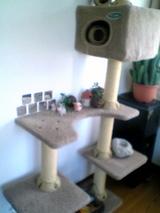 ぶんちゃんの部屋4