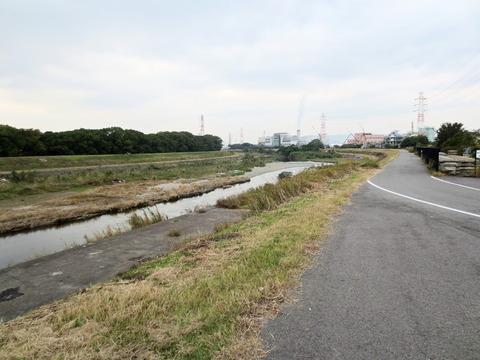 猪名川河川敷1