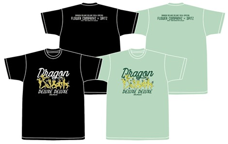 dragon2019b-1-2
