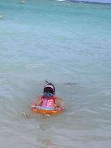 20070830海で泳ぐウサギ
