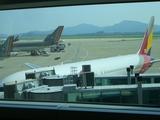 日本への飛行機