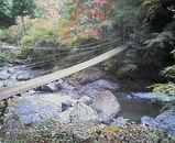研温泉つり橋1