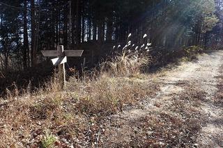 s-PB121632林道と旧中山道