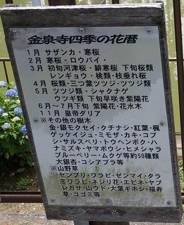 s-03四季の草花紹介