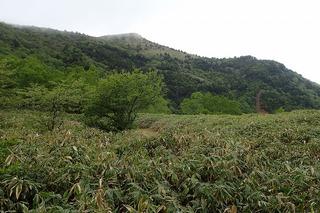 s-36鞍部から烏帽子岳