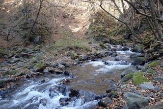 s-PB121561堰堤上の入渓点