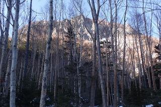s-56-登山道からP2211670