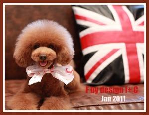 jan2011 designF