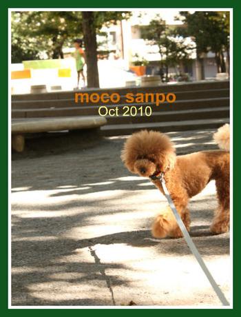 mocosanpo 201010