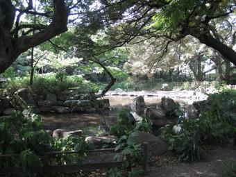 名主の滝4