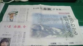 見本紙2011