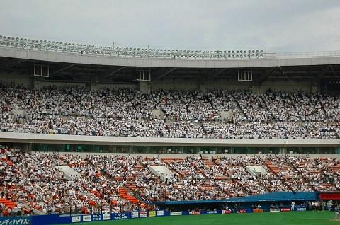白く染まるスタンド